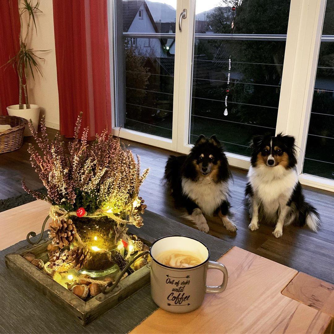 Guten Morgen und ...siehe Tasse ☕️ Geht's euch auch so? 😉 Schönen Dienstag!
