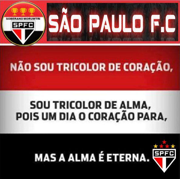 Pin De Rutyy Azevedo Em Sao Paulo Futebol Clube Com Imagens