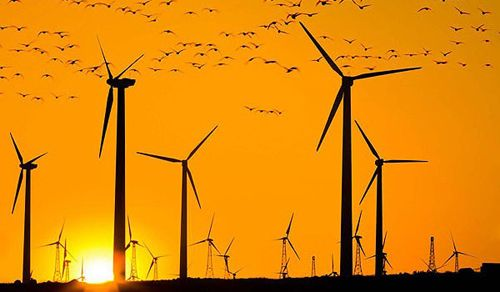 Disadvantages of Wind Energy | Wind Farms...Ugh! | Pinterest | Wind ...