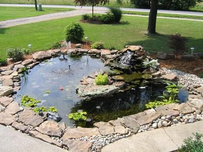 17 Best 1000 images about koi pond on Pinterest Backyard ponds
