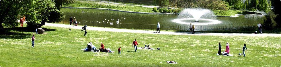 Villa serra di comago genova liguria il suo parco il for Laghetto per papere