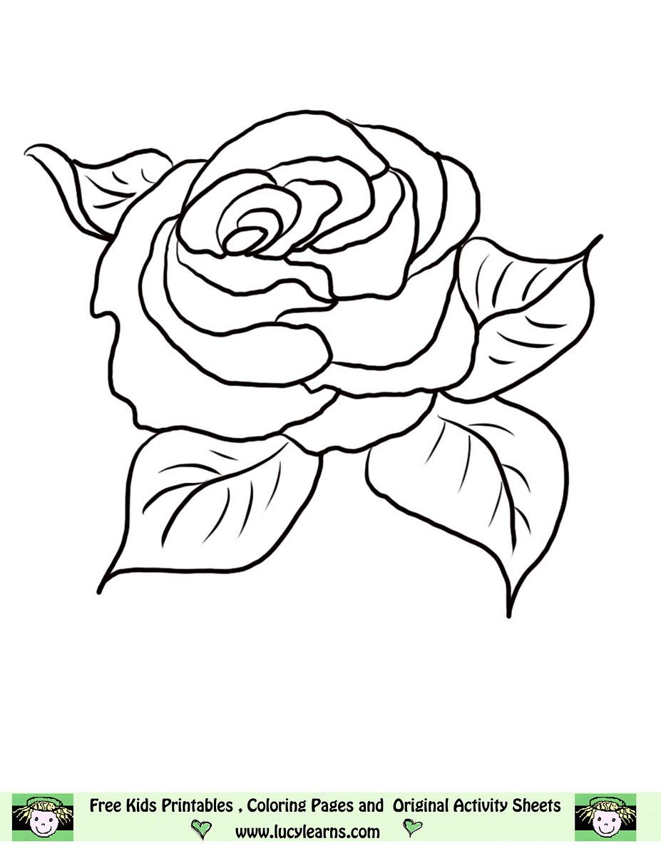 flower Page Printable Coloring Sheets | Rose Coloring Pages, Lucy ...