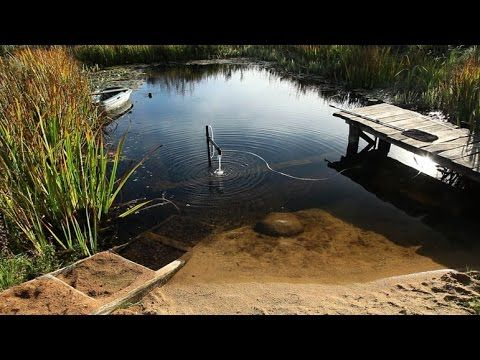 How To Make A Sandy Beach In An Organic Pool : Natural Pool   YouTube