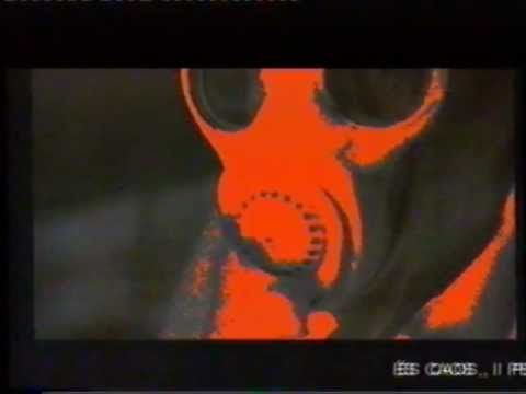 Jordi Bofill-Cortometraje-El Caos del buit.El vacio del caos.2000