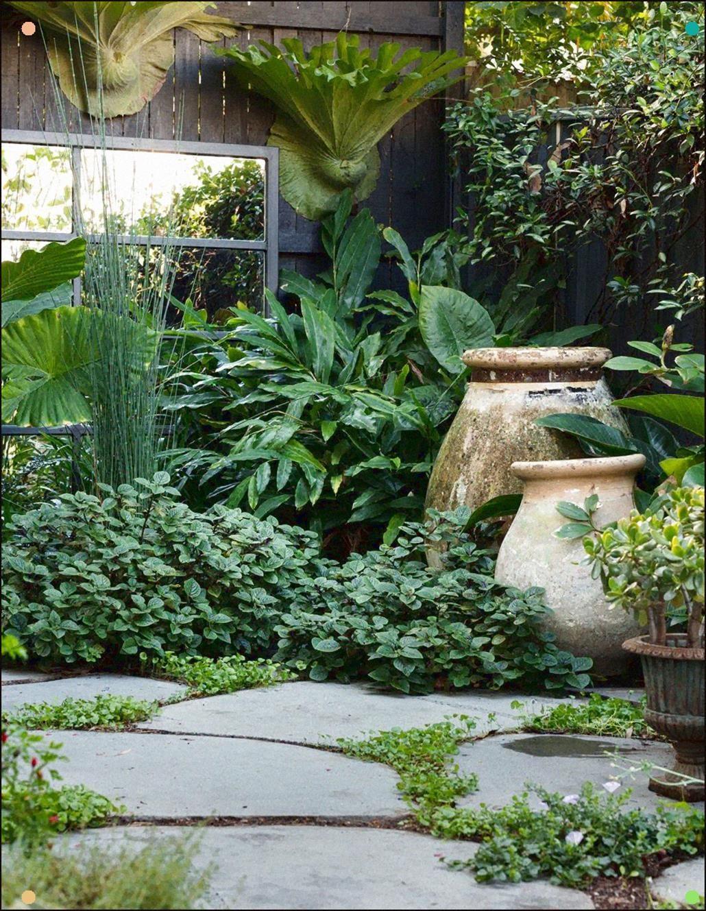 KHHGTYFYTFTY Planta de jard/ín precinto de Amarre Green Garden Alambre de Cuerda Rollo Suave Corbata Planta de Sujetadores de Alambre del Lazo de pl/ástico Recubierto de 5mm x 500cm