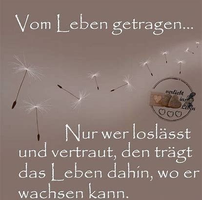 spruch pusteblume – Bing images