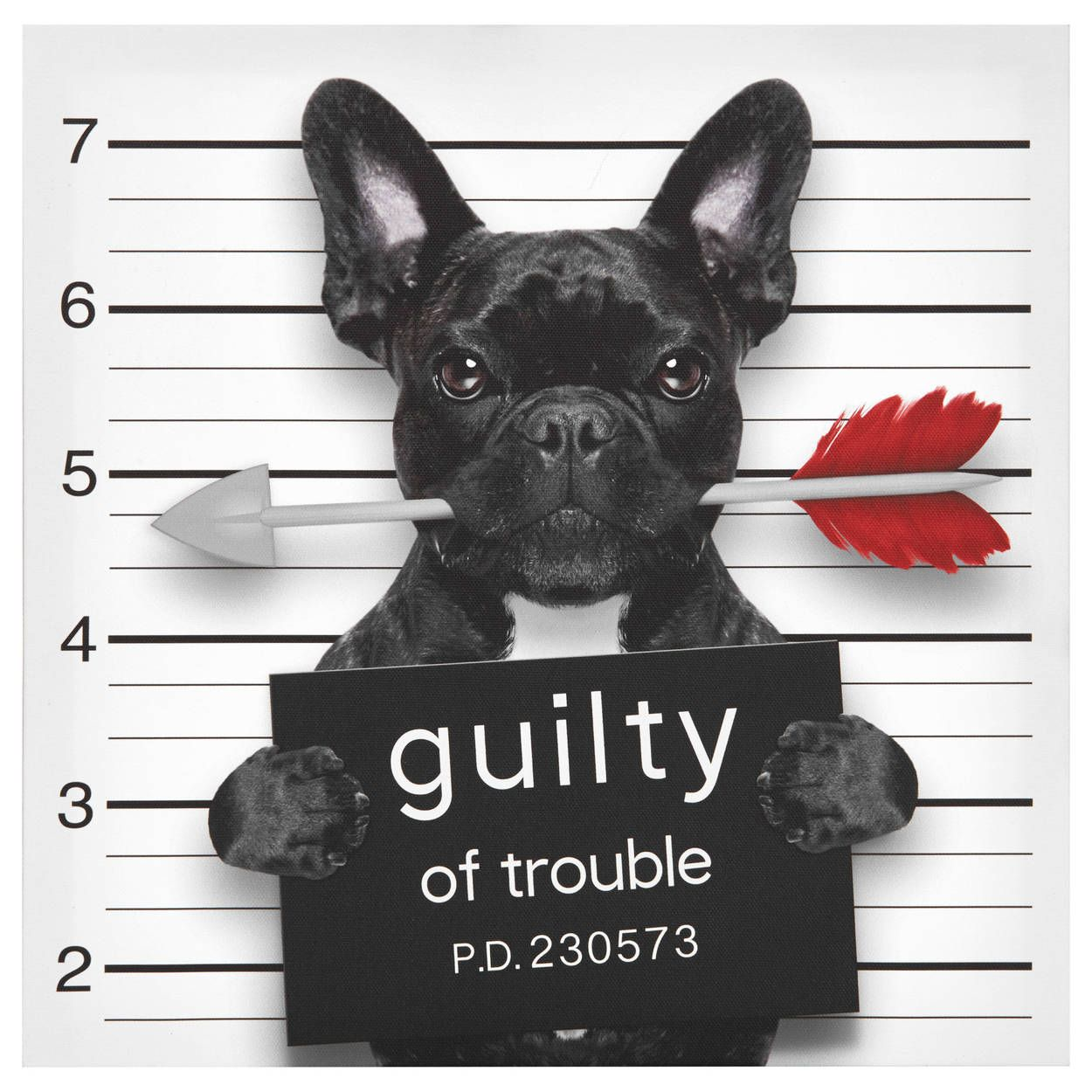 Tableau Guilty Of Trouble Dog Valentines Valentines Day Dog Valentines Day Memes