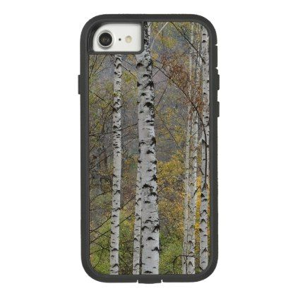Birch Forest Photo Apple IPhone 8 7 Tough Xtreme Case Mate Extreme