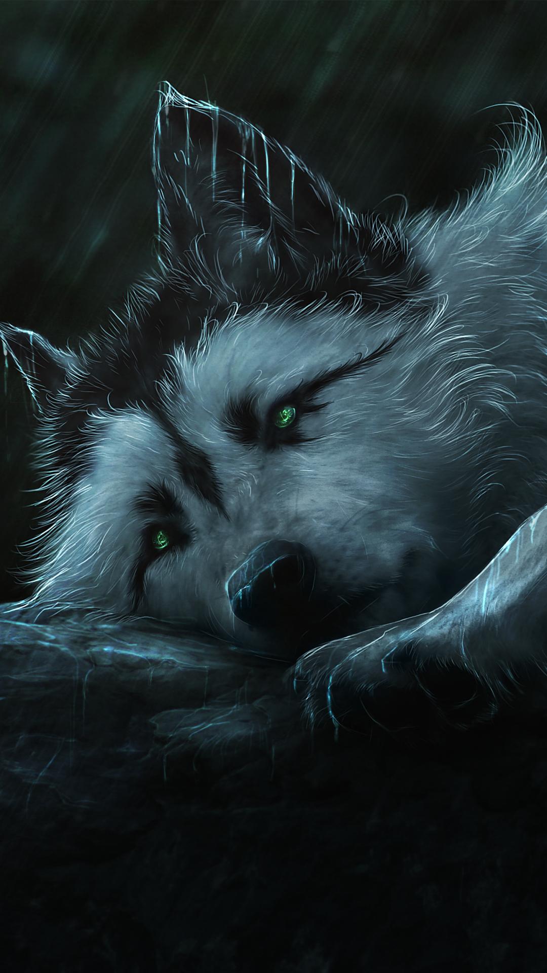 Animal Wolf 1080x1920 Mobile Wallpaper Galaxy Wolf Wolf