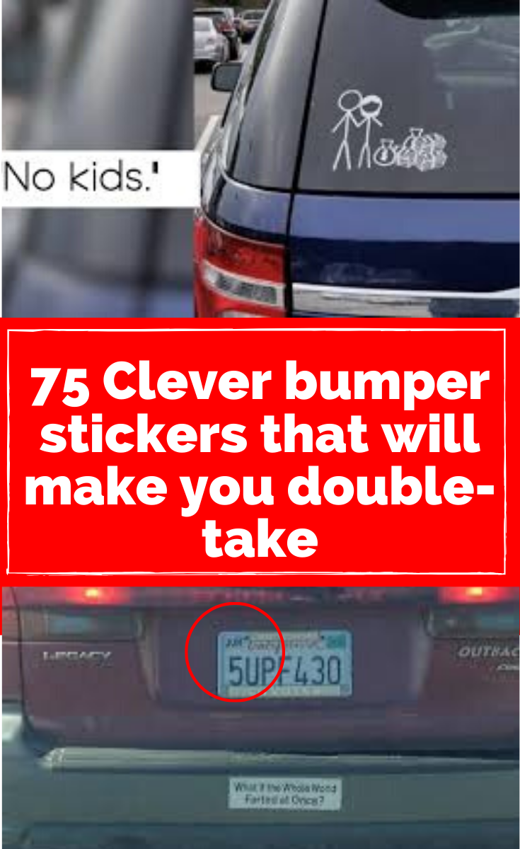 75 Clever Bumper Stickers That Will Make You Do A Double Take Clever Bumper Stickers Bumper Stickers Stick Figure Family [ 1200 x 735 Pixel ]