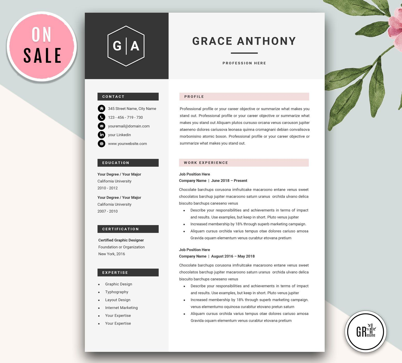 Professional Cv Resume Template Cv Resume Template Resume Template Creative Resume Templates