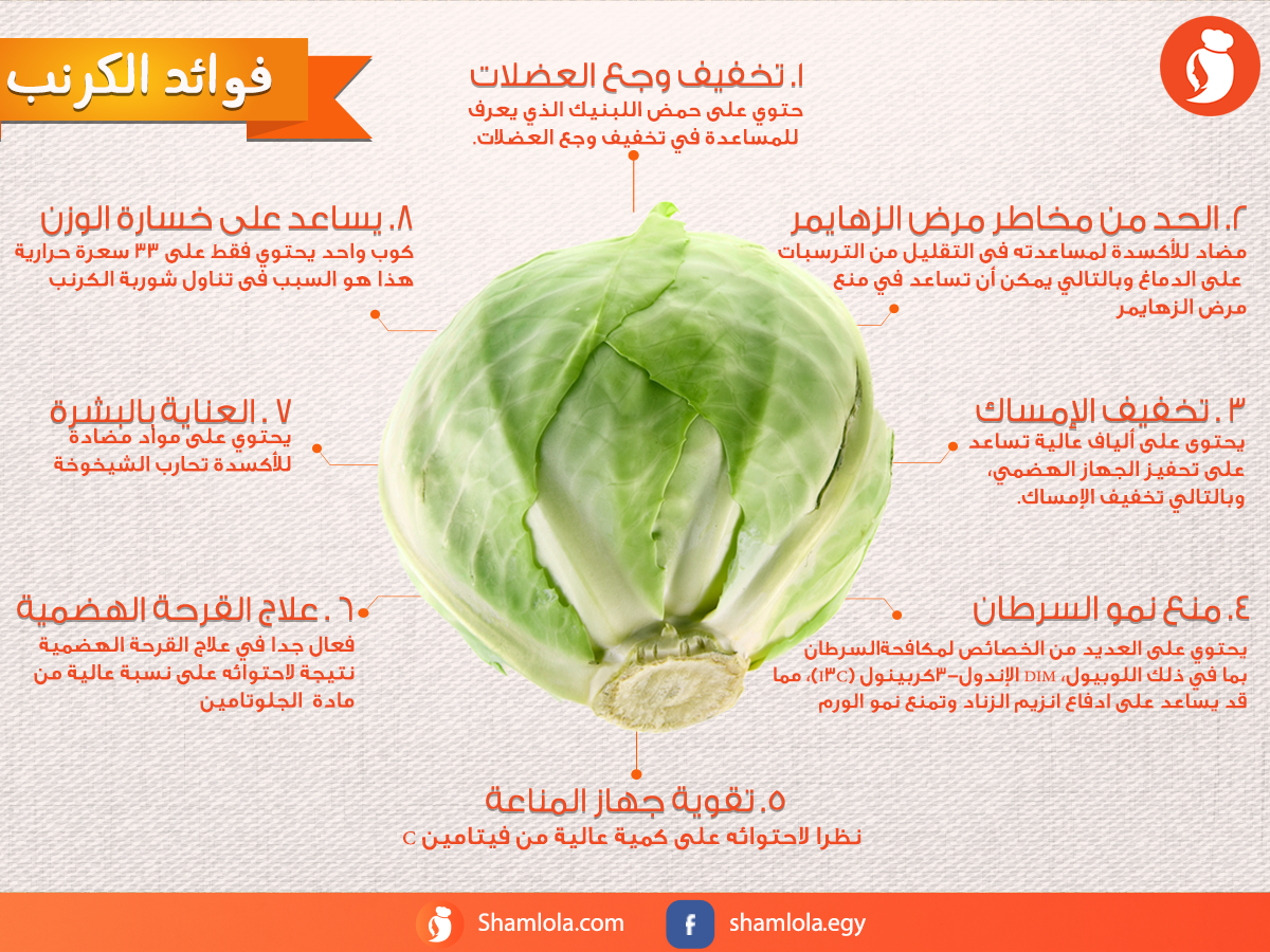 8 فوائد للكرنب غير انه طعمه تحفة في المحشي D D Recipes Food Vegetables