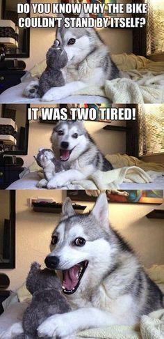 Dirt Bike Puns Google Search Funny Puns Dog Jokes Dog Puns
