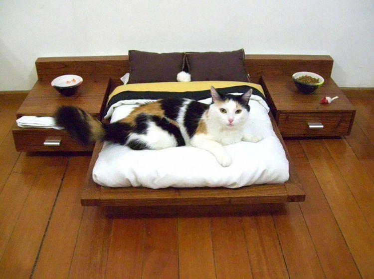 11 Möbel, die das Herz aller Katzenbesitzer (und das der Katzen