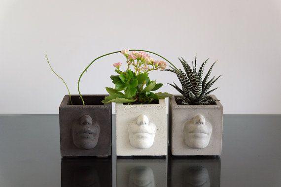 Konkrete Pflanzer  mit einem schönen Gesicht. von ConcWoodStreet