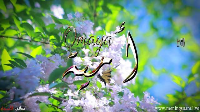 معنى اسم امية وصفات حاملة و حامل هذا الاسم Omaya In 2021 Animals Bird