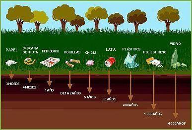 ¿Cuánto duran nuestros residuos en el medio ambiente?