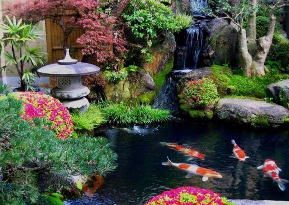 Jardim oriental em casa pesquisa google koi pond for Lagos de jardin