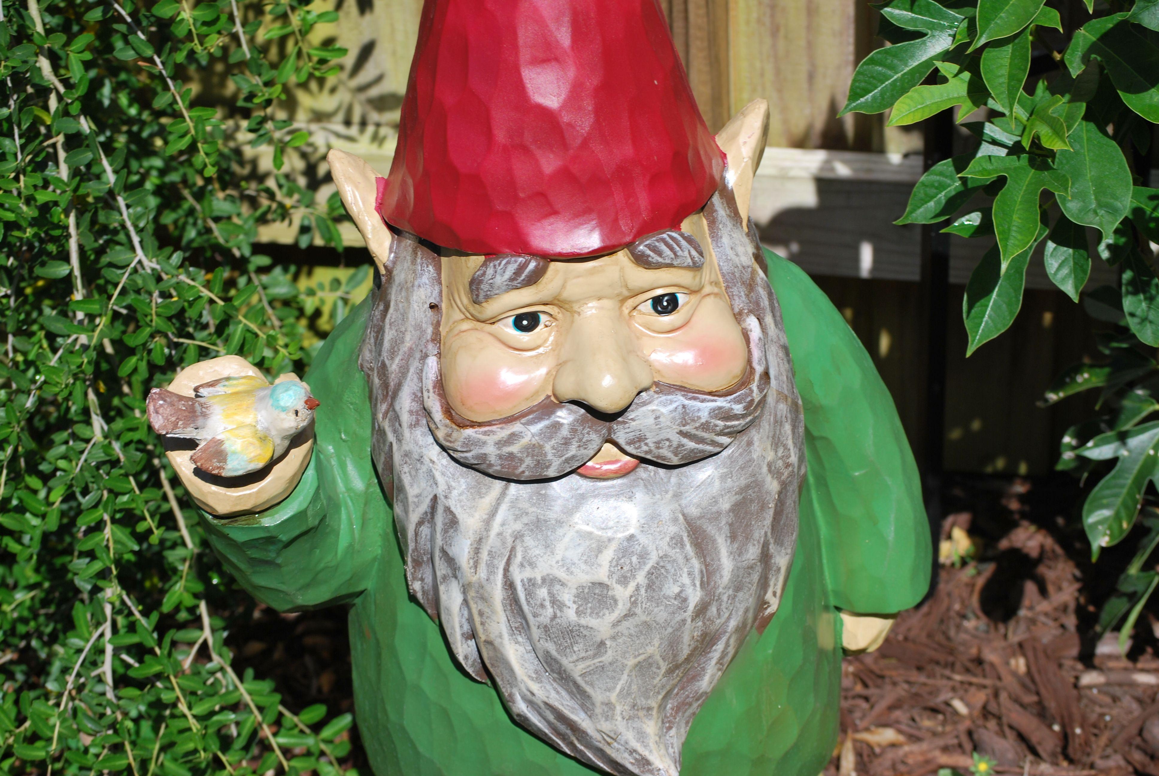 Superb Our Giant Garden Gnome
