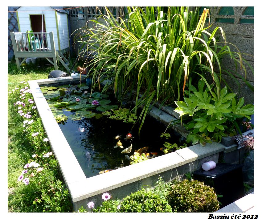 bassin semi enterr recherche google bassin cuve. Black Bedroom Furniture Sets. Home Design Ideas