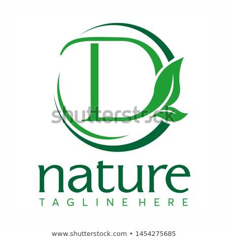 Letter D Logo Concept Nature Green Leaf Symbol Initials D Icon Natural Design Stock Vector Logo Concept Lettering Letter D