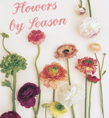 Flowers by season... Know what flowers are blooming on the west coast, east coast, south or midwest.