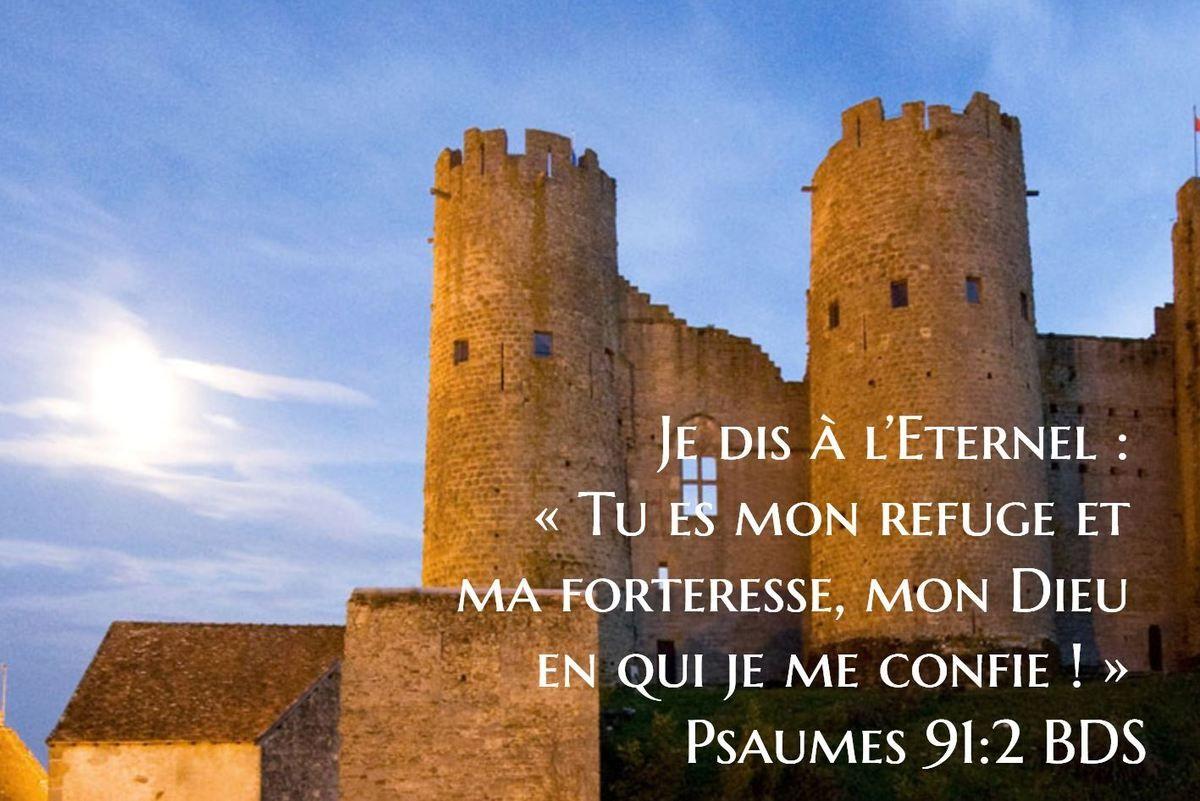 Je dis à l'Eternel :   « Tu es mon refuge et ma forteresse, mon Dieu en qui  je me confie ! » Psaumes 91:2 BDS   Bible apps, Bible, Willis tower