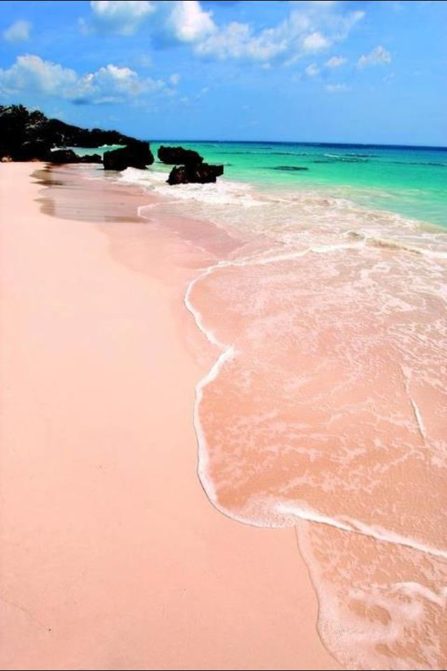 Bermuda pink sand beach (going here in 5 months!)