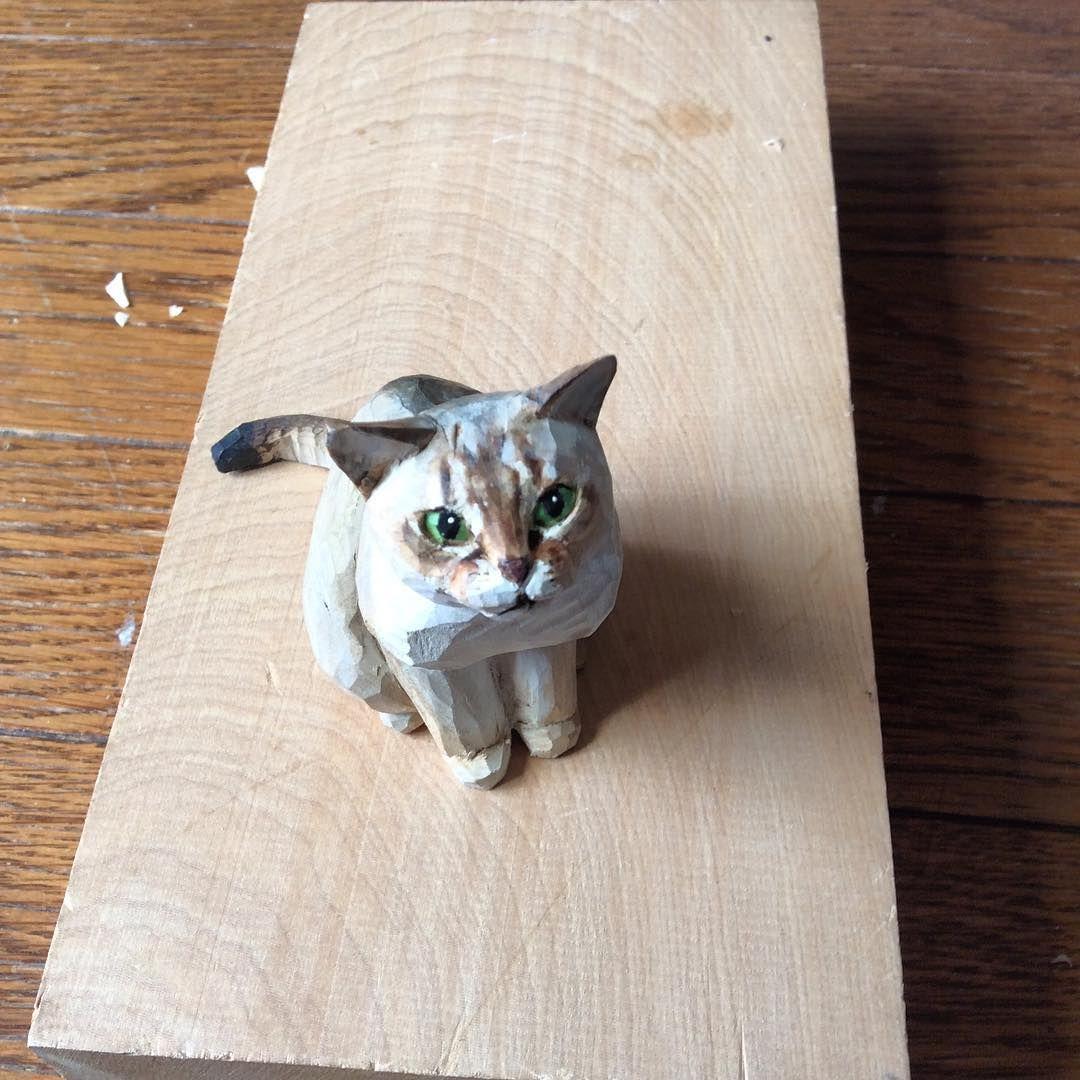nessuna descrizione della foto disponibile animals neko cats