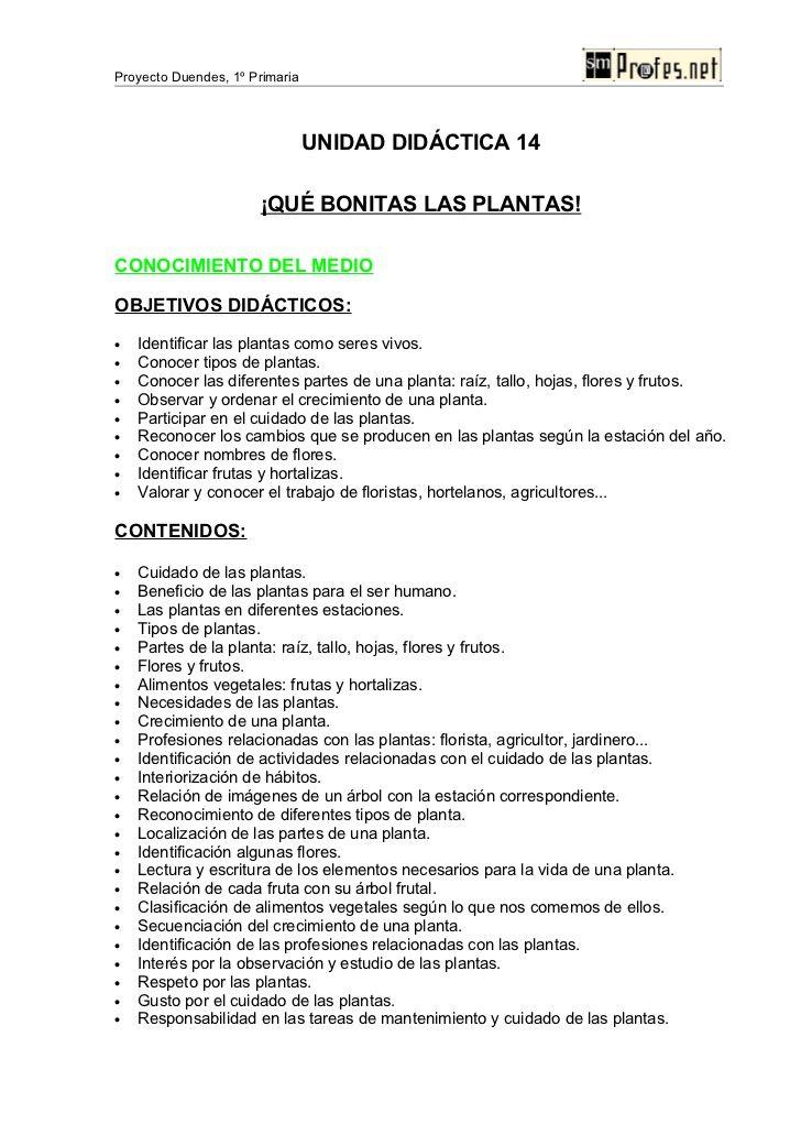 Proyecto Duendes 1º Primaria Unidad Didactica 14 Que Bonitas Las