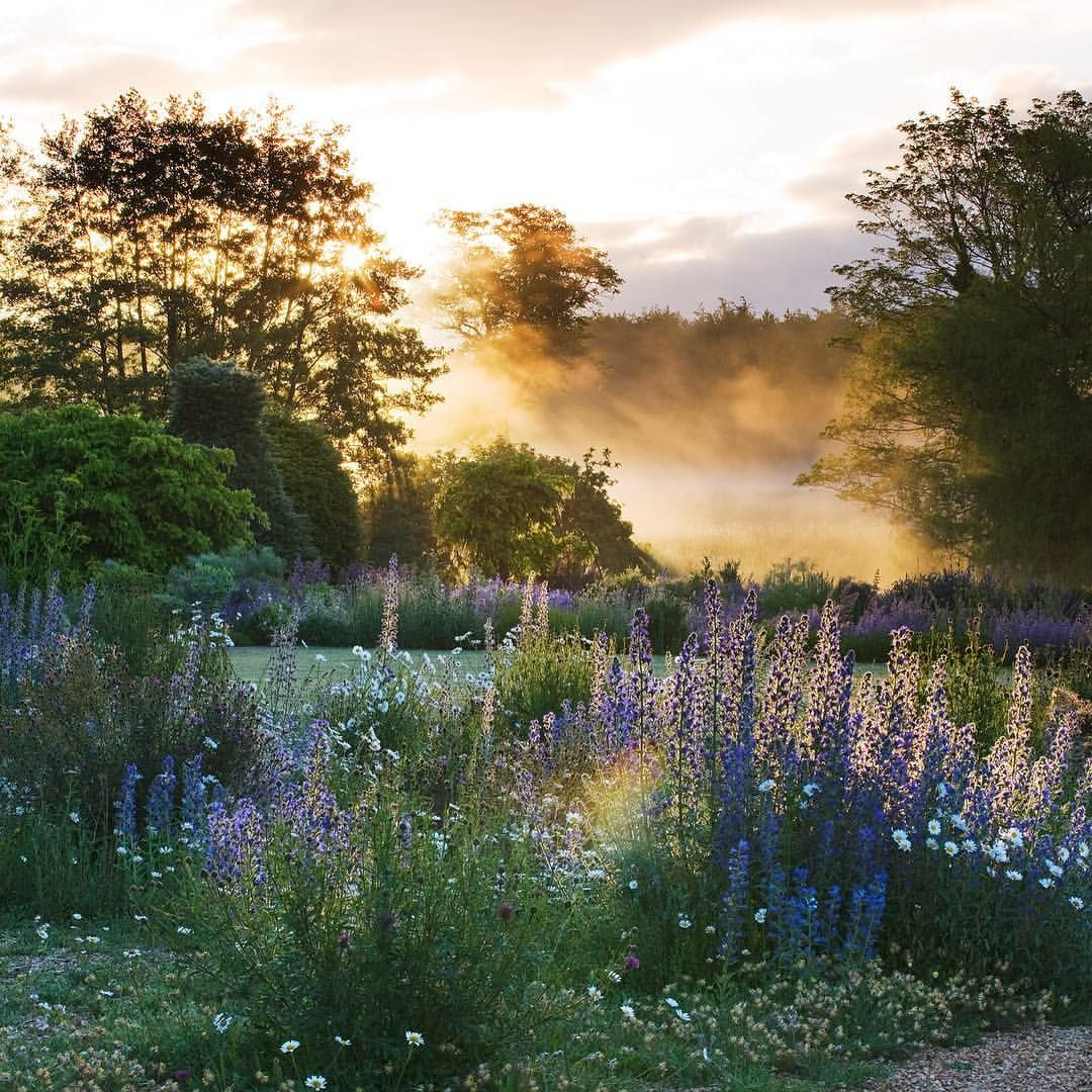 Dawn light on @narboroughhall beautifulnature beautifulgarden norfolk dawn light heavenly gravelgarden rivernar weddingvenue… is part of Gravel garden -