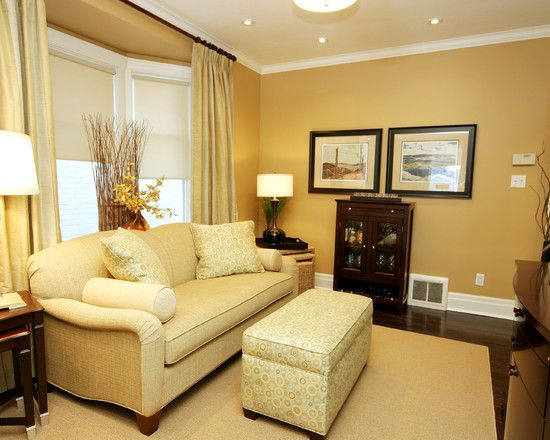 Paint Color For Living Room Design Pictures Remodel Decor And Interesting Bay Window Ideas Living Room Painting