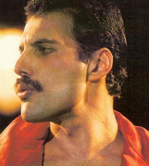 Pin By Marissa Pesquera On Freddie Mercury Love Of My Life Queen Freddie Mercury Freddie Mercury Freddie Mercury Barcelona