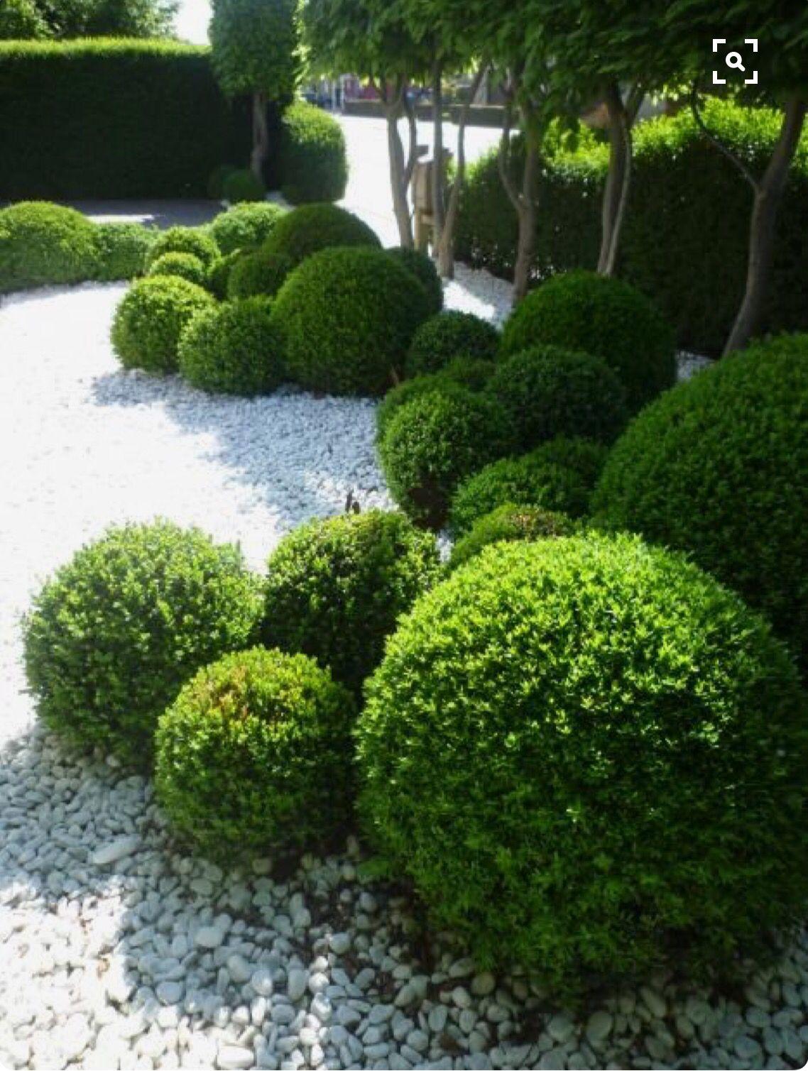 Balls Of Topiary In A Modern Minimalist Garden Design