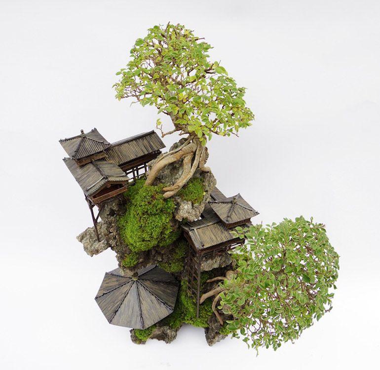 Ghim Của Ngu Ma Tren Nghề Lam Vườn Tree Art Bonsai Cay Nghề Lam Vườn