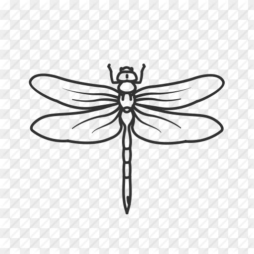 Dragonfly Drawing Png Bug Damselfly Dragonfly Flying Bug Flying Insect 512 512 Png Download Free Transparent Bac Dragonfly Drawing Damselfly Bugs Drawing