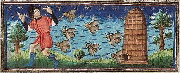 Museum Meermanno, MMW, 10 B 25, Folio 37r Very large bees coming out of a hive to drive off an intruder.