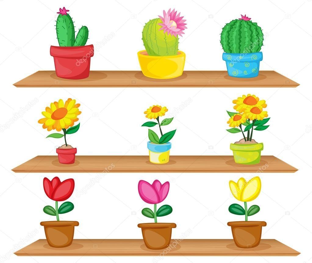 Resultado de imagen para plantas ornamentales animadas for Plantas decorativas ornamentales