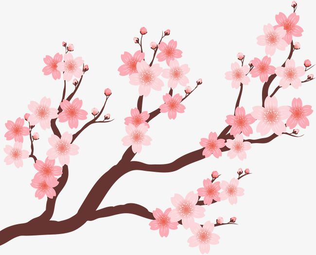 Beautiful Cherry Tree Cherry Blossom Clipart Vector Material Cherry Blossom Festival Png Transparent Clipart Image And Psd File For Free Download Cherry Blossom Decor Cherry Blossom Wedding Theme Cherry Blossom Tree