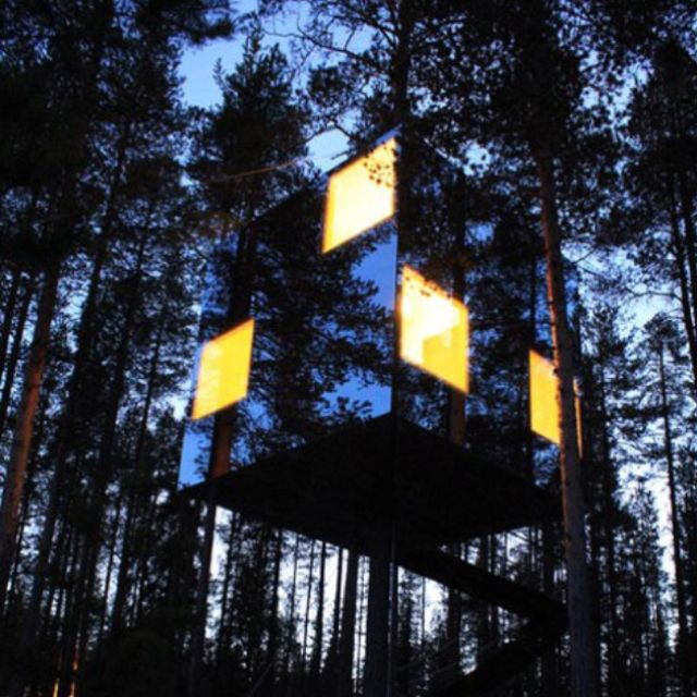Invisible tree house!