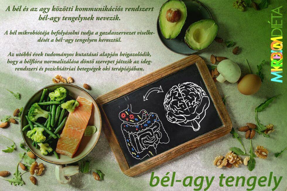 fogyás bél mikrobiom)