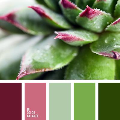 болотный цвет, бордовый, грязный болотный, зеленый, оттенки лилового, подбор цвета, салатовый, сиреневый, сочетание цветов для декора интерьера, тёмно-зелёный, тёмно-розовый, цвет болота, цвет болотной зелени, цвет зелени, цвет зеленых листьев, цвет