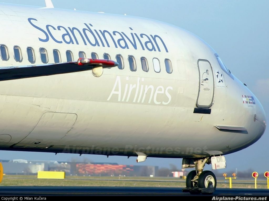 scandinavian airlines sas - Google Search