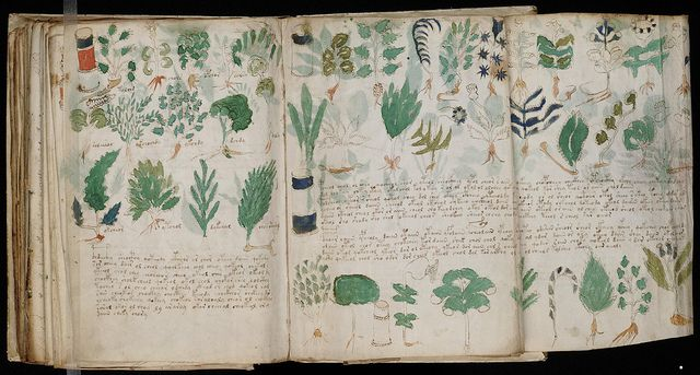 """The Voynich manuscript, described as """"the world's most mysterious manuscript"""" is a work which dates to the early 15th century, possibly from northern Italy."""