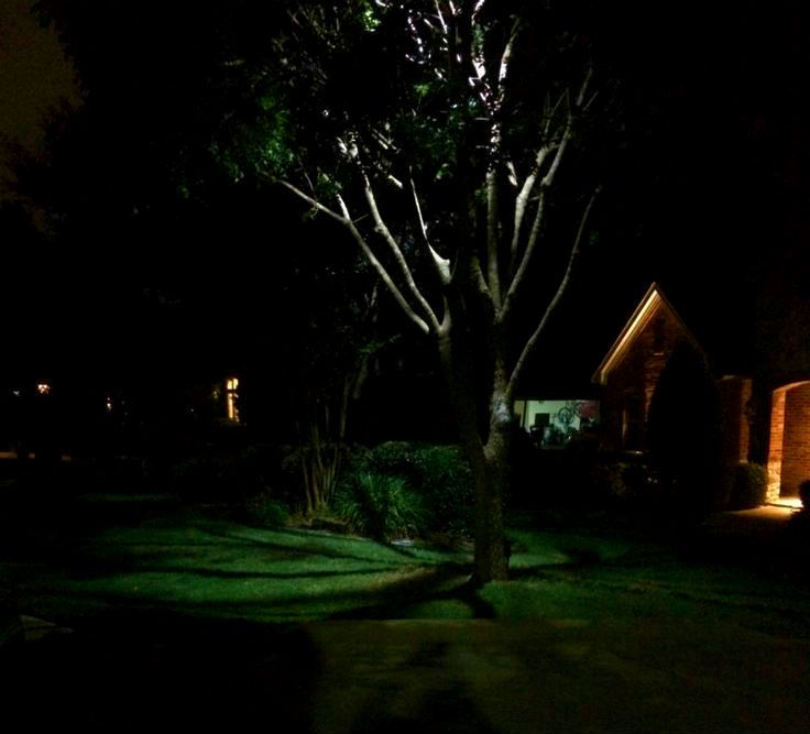 Moonlighting tree lighting pinterest dallas landscaping and dallas tree lighting installation moonlighting effect call dallas landscape lighting 214 202 7474 or httpdallaslandscapelighting aloadofball Choice Image