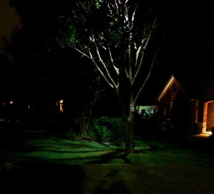 tree lighting dallas landscape lighting