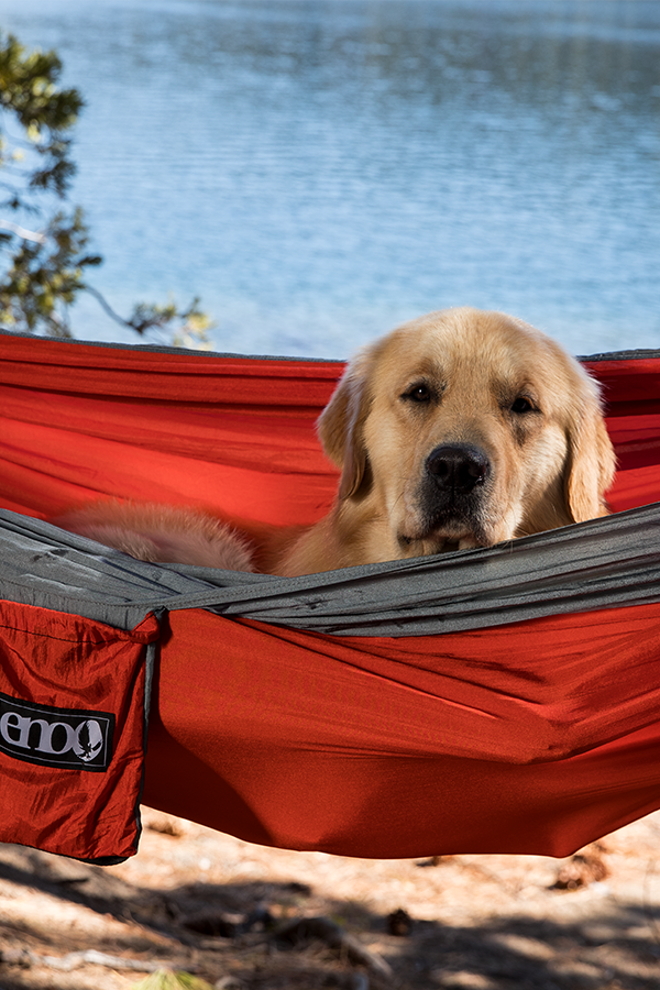 Nobody loves the great outdoors in a hammock more than the