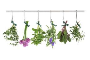 A guide to home organic dehydrating, drying and preservation methods.