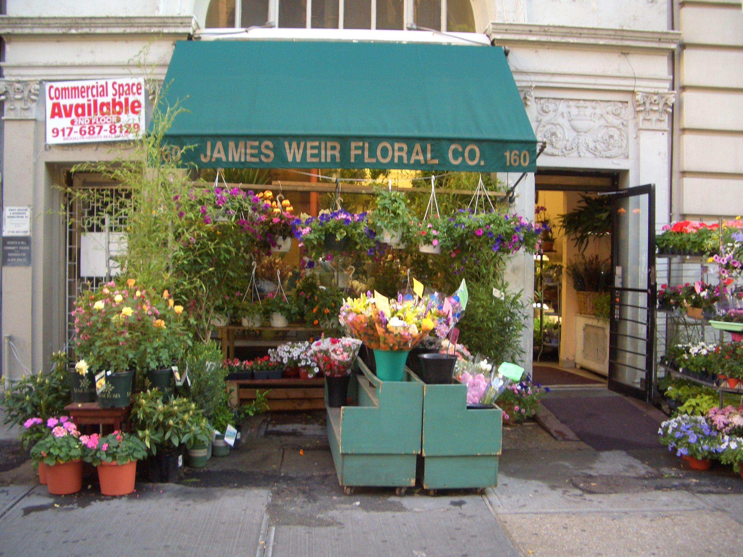 Best Flower Shop Pictures Flowers Pinterest Flower Shops