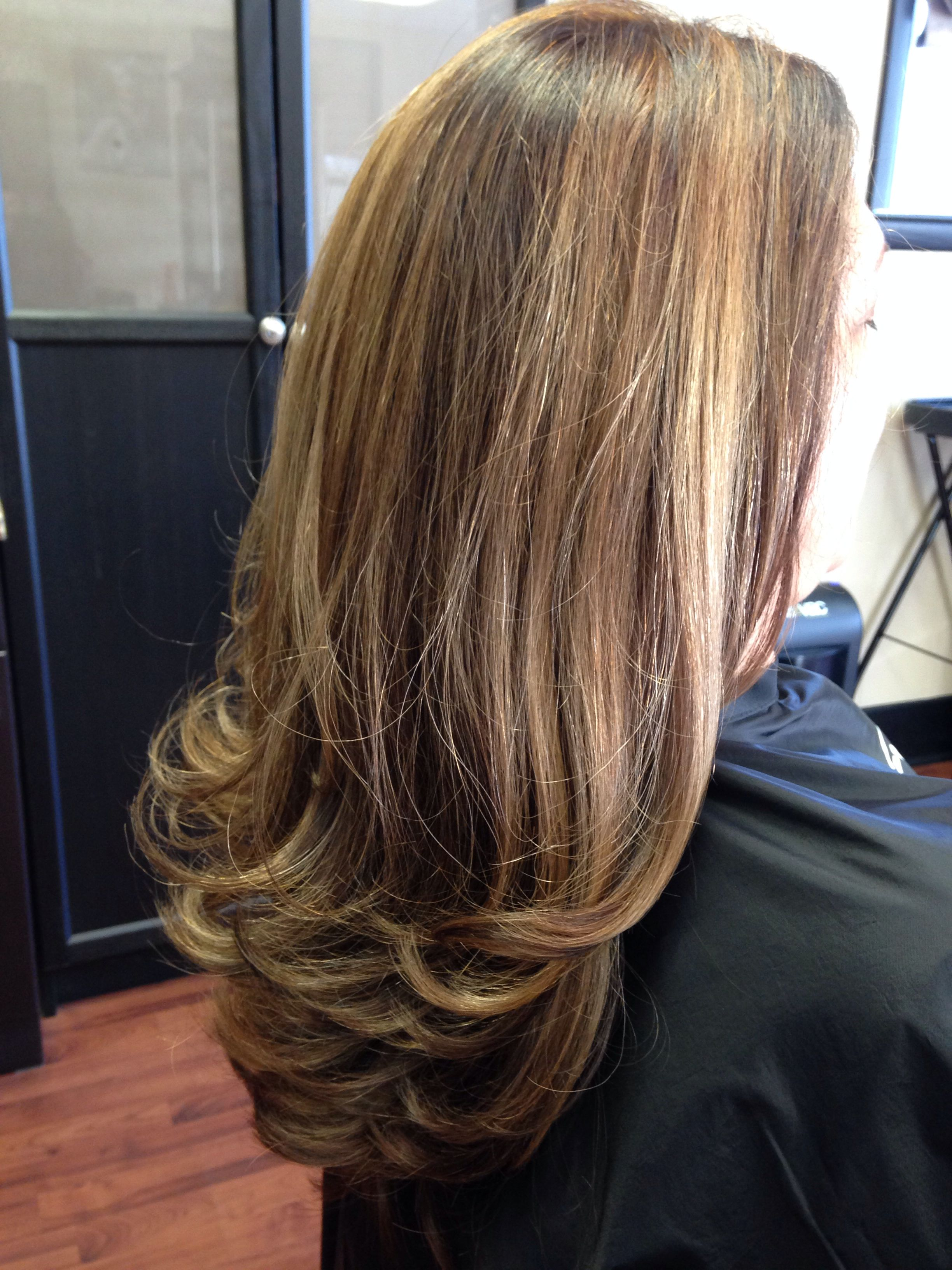6bv Pm Shines Toned Hl 5n 5n Pm Color Paul Mitchell Color